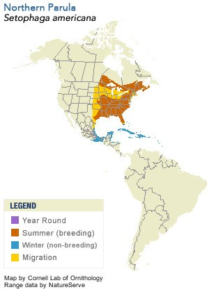 Range Map of Northern Parula - Cornell Lab of Ornithology