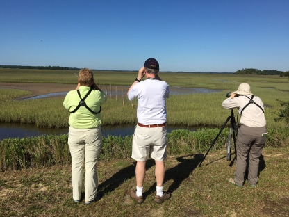 Flo, Karl Holtzschue of NYC and Nancy looking at the Whimbrel's hiding in the marsh