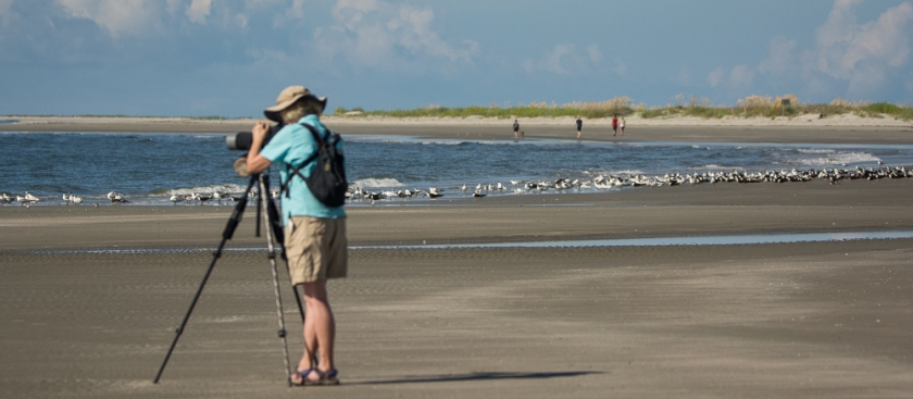 Aija enjoying the birds on North Beach - Ed Konrad