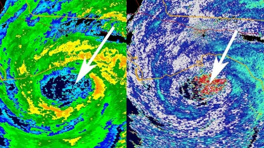 As Hurricane Hermine made landfall along Florida's Gulf coast, radar detected an interesting phenomenon: birds trapped flying inside the calm eye of Hermine. The red shaded area on the image to the right shows the birds swirling inside Hermine's eye just before landfall.