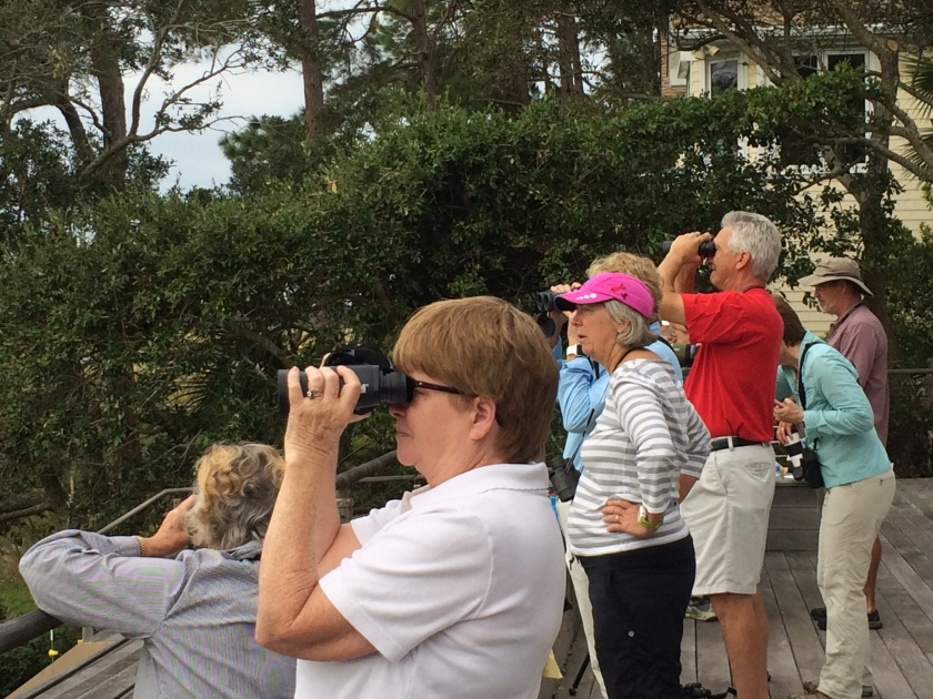 SIB members enjoying the diversity of birds - Judy Morr
