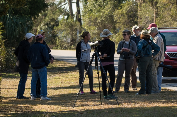 SIB members birding on Jenkins Point during the GBBC - Ed Konrad