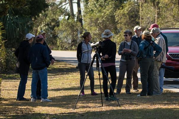 SIB members birding on Jenkins Point during the GBBC - Ed Konrad