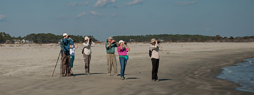 SIB members birding North Beach - Ed Konrad