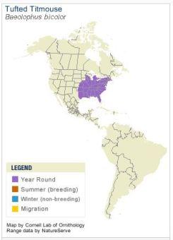 Range Map of Tufted Titmouse - Cornell Lab of Ornithology