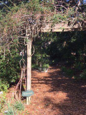 Entrance Lee Hurd's Garden at 1126 Loblolly