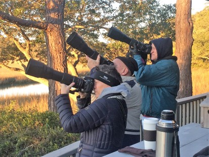 Backyard Birding Photographers - Judy Morr