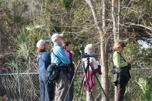 BIRD WALK 2-18-18 (5 of 7)
