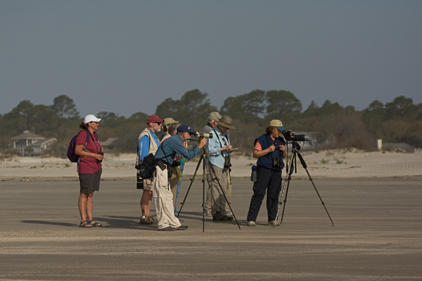 5SIB North Beach bird walk