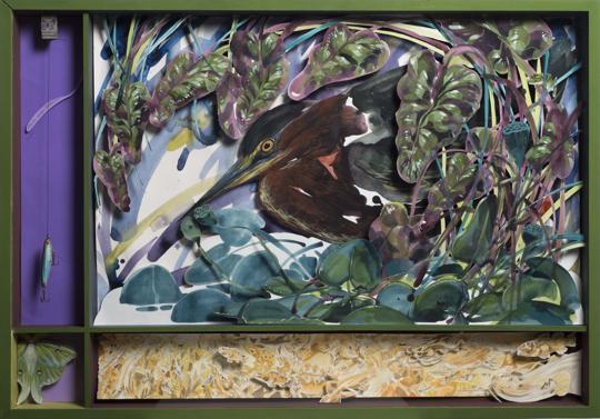 Hitnes Green Heron