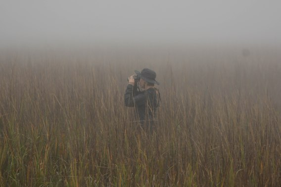 Aija Konrad in search of Marsh Sparrows at North Beach - Ed Konrad