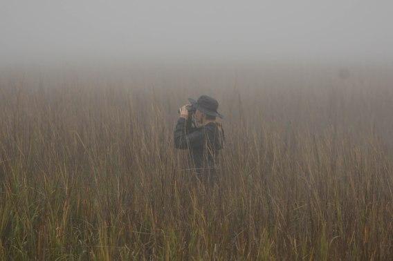 Aija Konrad in search of Marsh Sparrows at North Beach - Ed Konrad