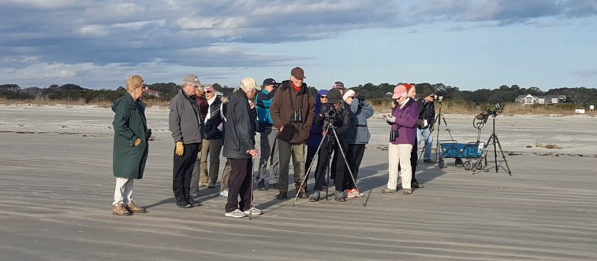 1 Learning Together in Search of Shorebirds