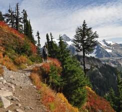 Mt Baker, Ptarmigan Ridge, WA - Ed Konrad
