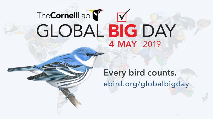 2019 Global Big Day